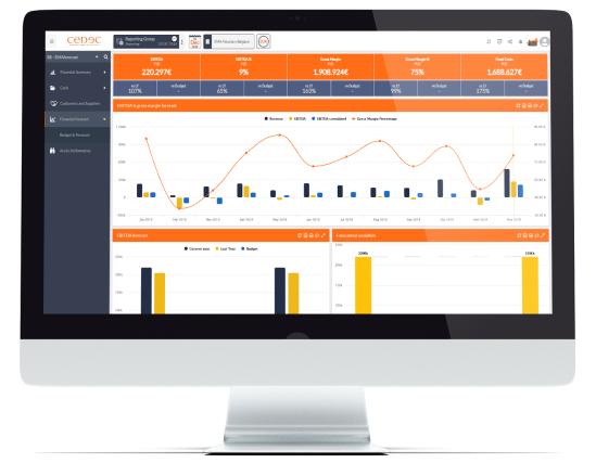 La consulenza organizzativa e strategica CEDEC presenta i suoi strumenti di analisi aziendale: CEDEC Business Intelligence